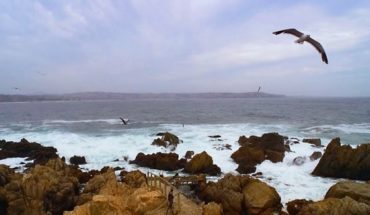 How advanced marine power in Chile: Research Center seeks to reduce carbon 2030