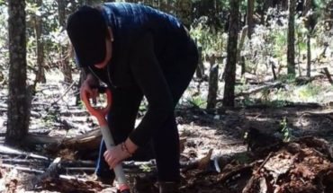 Located skeletal remains in tracking implemented by the Public Prosecutor