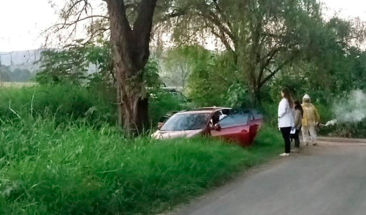 Motorist dies from attack of bees in Tarímbaro, Michoacán