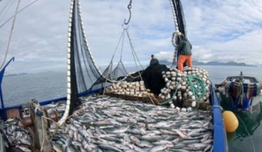 The strategy of the fishing industry; lies, lies something will