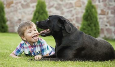 Ticks and fleas can cause fever in humans and lameness in pets