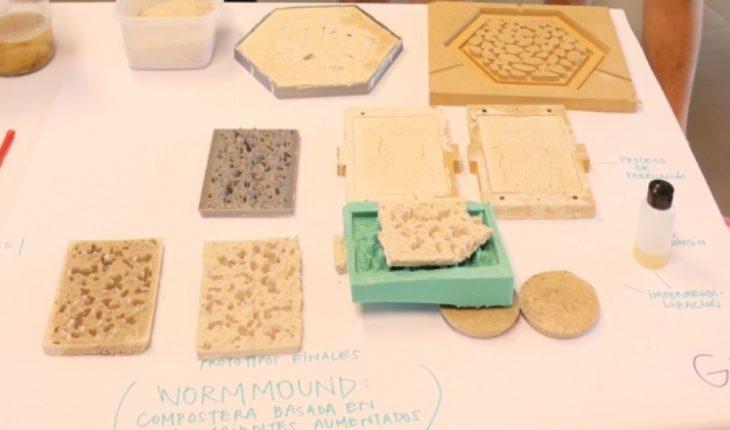 Estudiantes chilenos visitarán el MIT por crear una compostera con conchas de mar