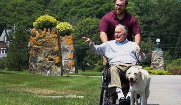 La postal que conmueve al mundo: el perro que cuidó a Bush hasta el final