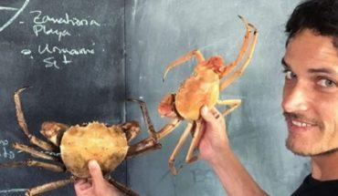 Rodolfo Guzmán: Chile necesita conocimiento para explorar nuevos ingredientes