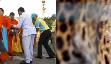 Budista meditaba tranquilamente hasta que un leopardo lo mató