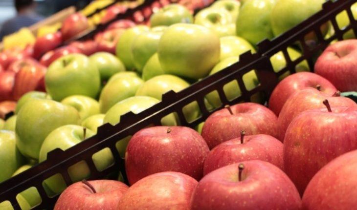 Feed the sustainability - El Mostrador