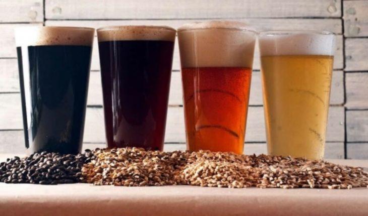 ¿Vacaciones en Santiago, Temuco o Puerto Montt? Estas son las cervezas artesanales que debes probar