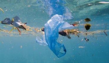 Alertan por contaminación irreversible a causa de plásticos en los océanos
