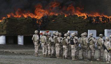 Bajan los decomisos de drogas a cargo del Ejército
