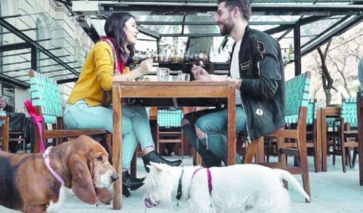 Pet friendly: los lugares para visitar con tu mascota