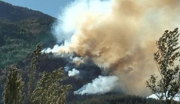 Todavía no lograron controlar los incendios forestales en Chubut