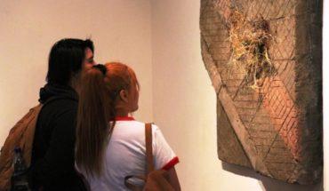 "Exhibition ""Transplantation of simulated urban"" Matilde Videla at Casa Colorada artist"