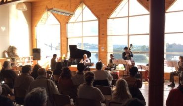Free concerts of nucleus of Sonora experimentation (NES) in Chiloé