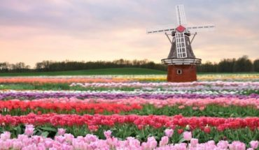 The Netherlands revolutionize agriculture