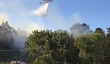 34 incendios forestales se encuentran activos en la zona centro sur del país