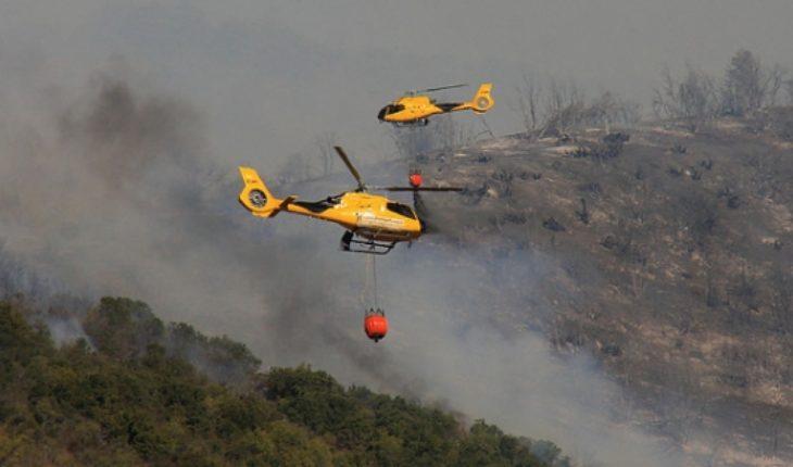 Conaf informa 30 incendios forestales en el país y confirma dos víctimas fatales en La Araucanía