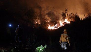 Controlan incendio en Xochimilco   EL DEBATE