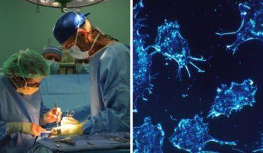 Desarrollan método para evitar rechazo en trasplantes