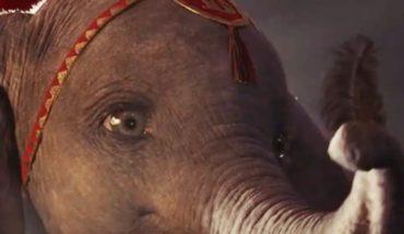 """Disney va por más: adelanto exclusivo de """"Dumbo"""", cada vez más cerca"""