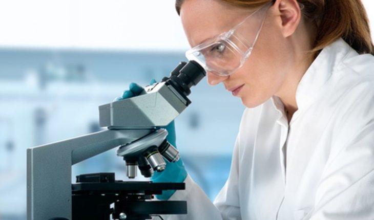 En el día de las mujeres en la ciencia, los números que preocupan