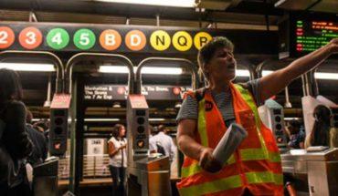 Gatos y mapaches invaden el metro de Nueva York