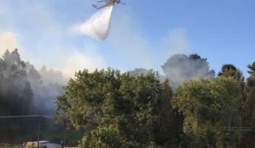 """Gobierno por dichos de Ubilla tras vincular incendios forestales con la causa mapuche: """"Dejemos trabajar a la justicia"""""""
