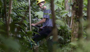 Huracanes crean laboratorios de cambio climático en P.Rico