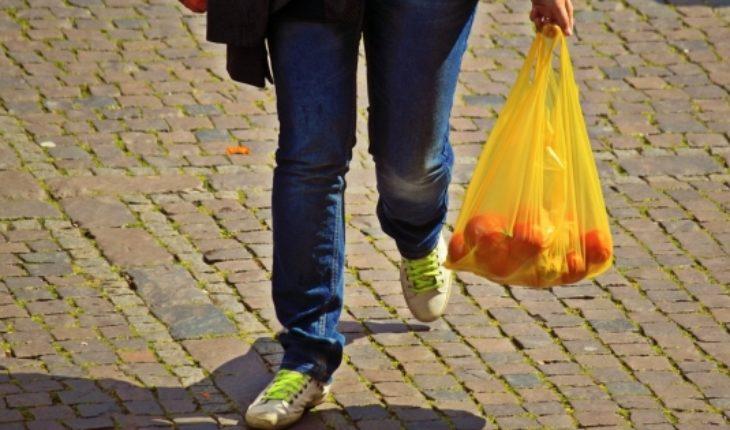 WWF Chile celebra prohibición de bolsas plásticas con 10 consejos para adaptarse a la nueva ley