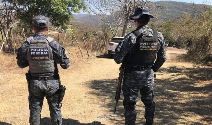 AMLO accused NGOs of hindering the National Guard insulated the