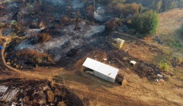 """Fire in Carahue: Mayor says that """"the commune is practically burned everywhere"""""""