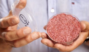 Frankenburguer: five years of the first hamburger in vitro