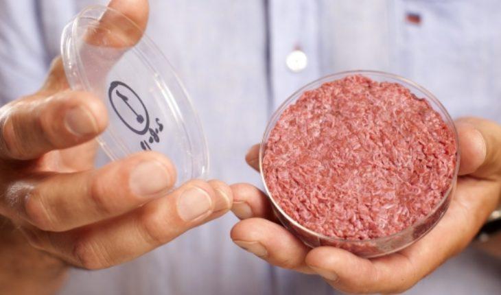 Frankenburguer: five years of the first hamburger in vitro