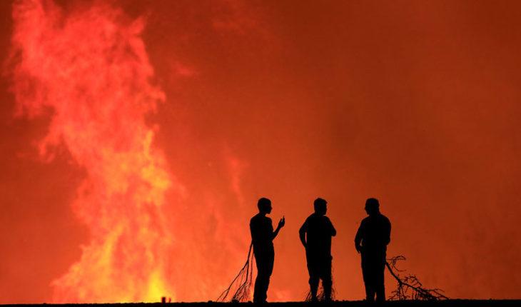 """Ministro de Agricultura e incendios: """"Hay mayor intencionalidad, pero no sabemos cuál es el origen"""""""
