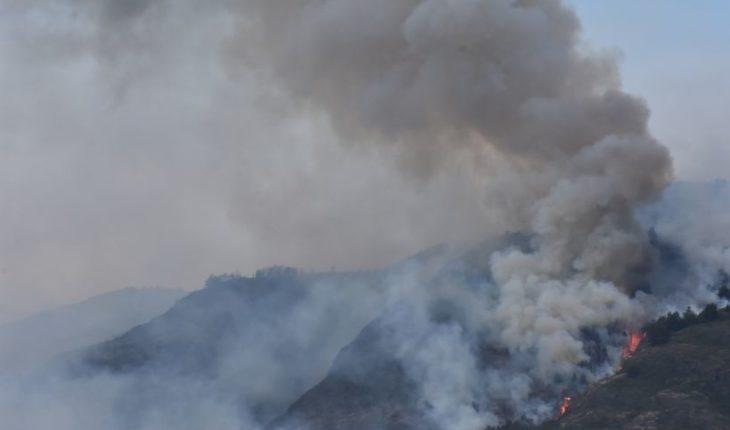 Onemi: 15 incendios forestales activos y hay Alertas Rojas en Valparaíso y Aysén