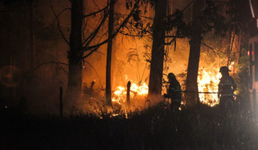 Onemi: 45 forest fires are active at national level
