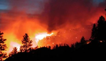 Scientists warn of environmental challenges to prevent and control forest fires
