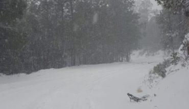 Chihuahua bajo cero y con nevadas; emiten alerta roja y cierre de carreteras