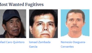 La jugosa recompensa de la DEA por El Mayo, Caro Quintero y El Mencho