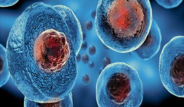 Paciente sin rastro de VIH, tras someterse a un trasplante de células madre