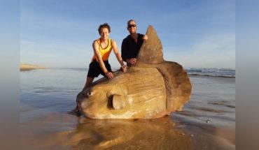 Pescadores encuentran un extraño pez gigante, en las playas de Australia