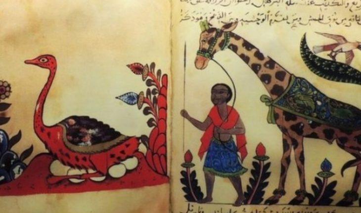 Al - Jahiz, the Muslim philosopher who had the idea of evolution 1,000 years before Darwin