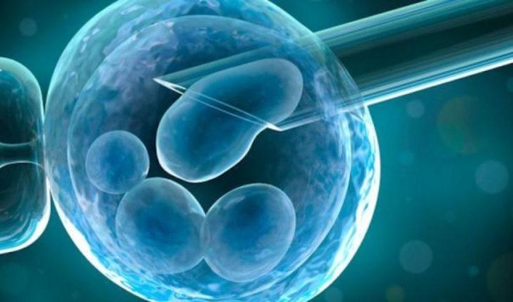 """Dr. Alfonso Martínez-Arias de U. Cambridge: """"Utilizando células madres podremos crear embriones humanos"""""""