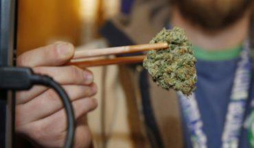Estudio: Fumar marihuana a diario aumenta riesgo de psicosis