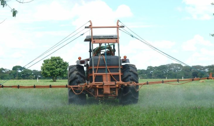Glyphosate is not considered dangerous in Mexico