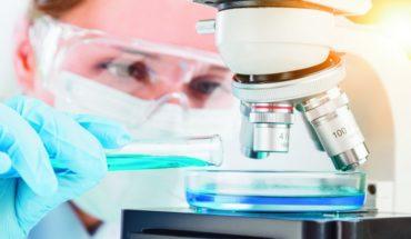 Investigación universitaria: clave para el desarrollo local