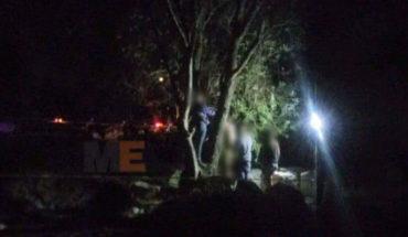 Joven se quita la vida al ahorcarse en un árbol, en la colonia Obrera de Morelia, Michoacán