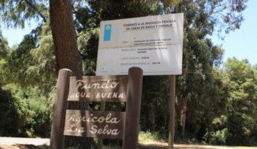 Parque eólico alemán en la Araucanía: ¿beneficiará a los mapuches?