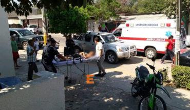 Swarm of bees attack, leaving 17 injured in Las Guacamayas, Lázaro Cárdenas, Michoacán