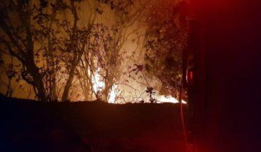 26 bomberos mueren combatiendo incendio forestal en China