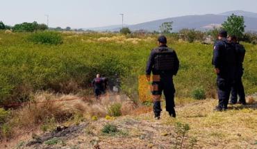 En estado putrefacto encuentran el cadáver de un hombre en Zamora, Michoacán